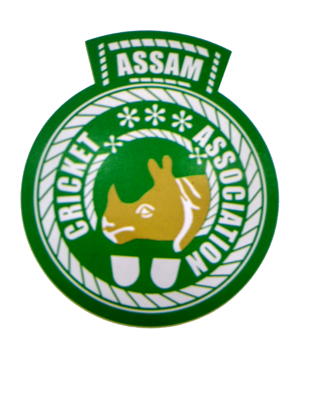 assamcricket-logo